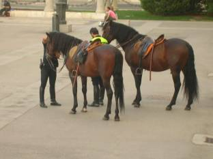 madrid_police_cheval.jpg